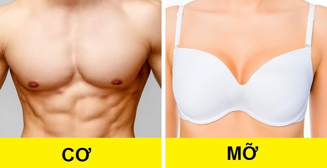 27 sự thật thú vị về cơ thể phụ nữ khiến chính họ cũng phải ngạc nhiên