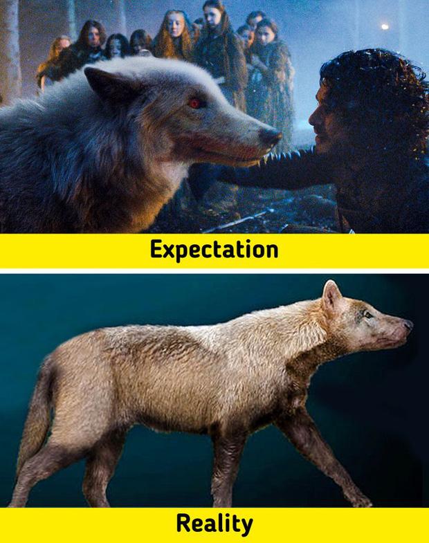 7 sinh vật tưởng chừng như có trên phim nhưng hóa ra từng có thật ở ngoài đời